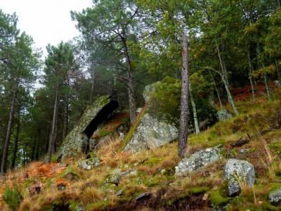 Reserva Natural del Valle de Iruelas;agencia de viajes en madrid viajes de fin de año cerezos en fl